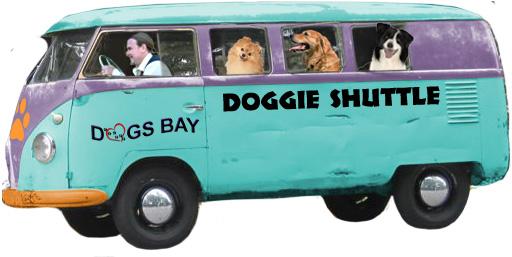 Dogs Bay Doggie Shuttle